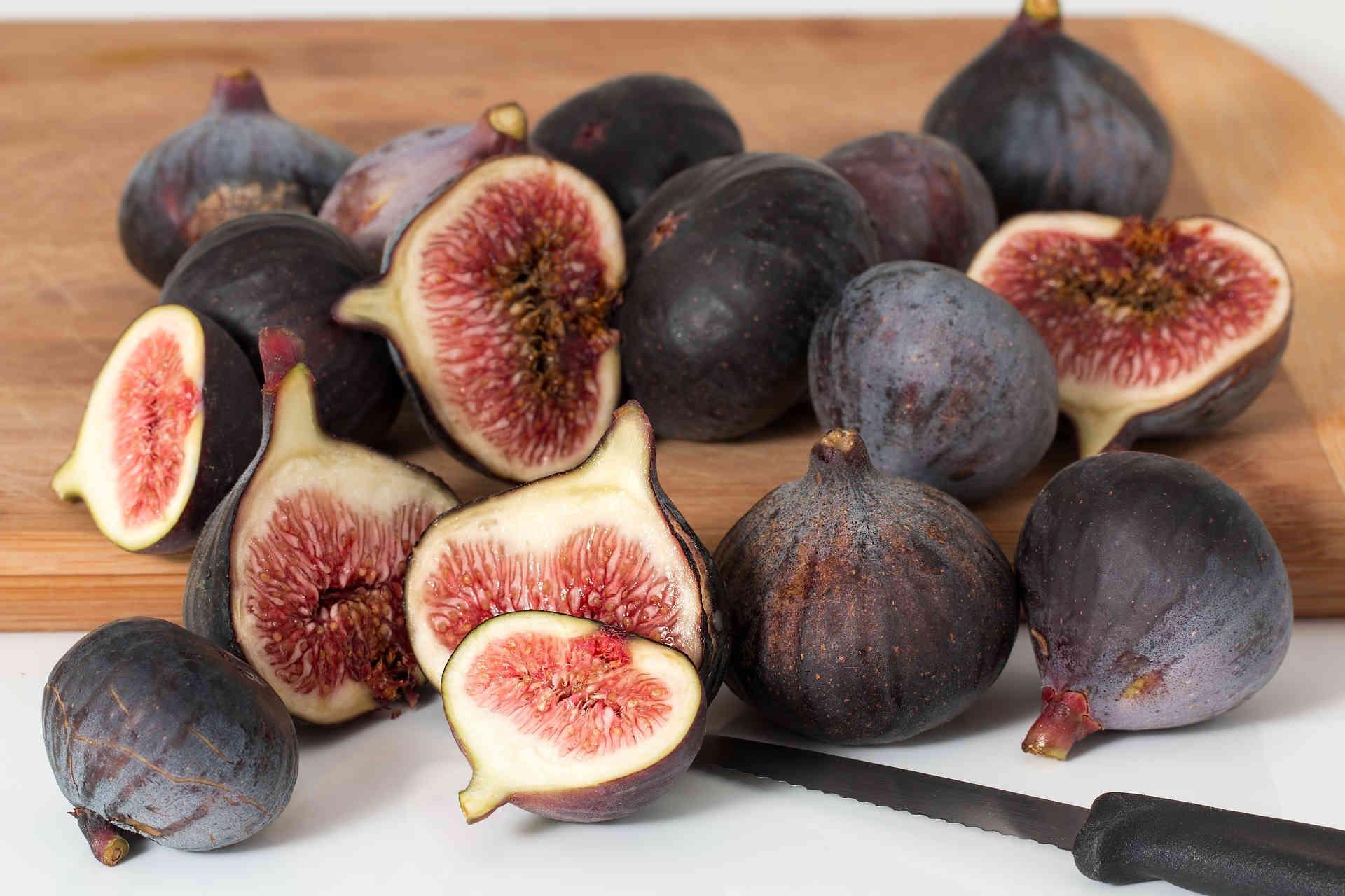 figs-190308-72