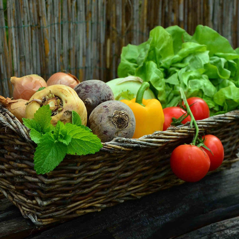 vegetables-190308